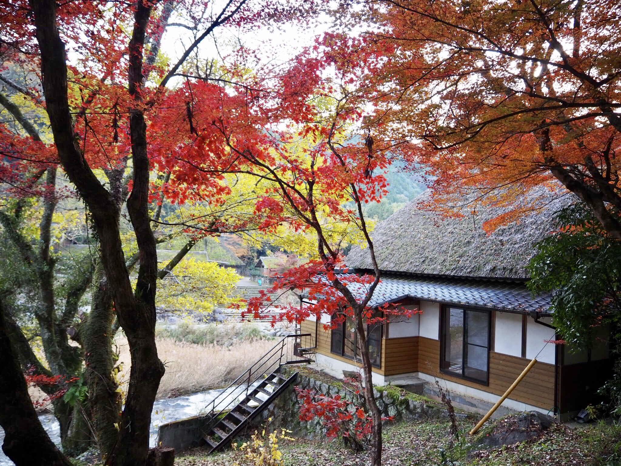 img 7525 - 香嵐渓 - 日本の秋を感じる 愛知県豊田市の紅葉スポット