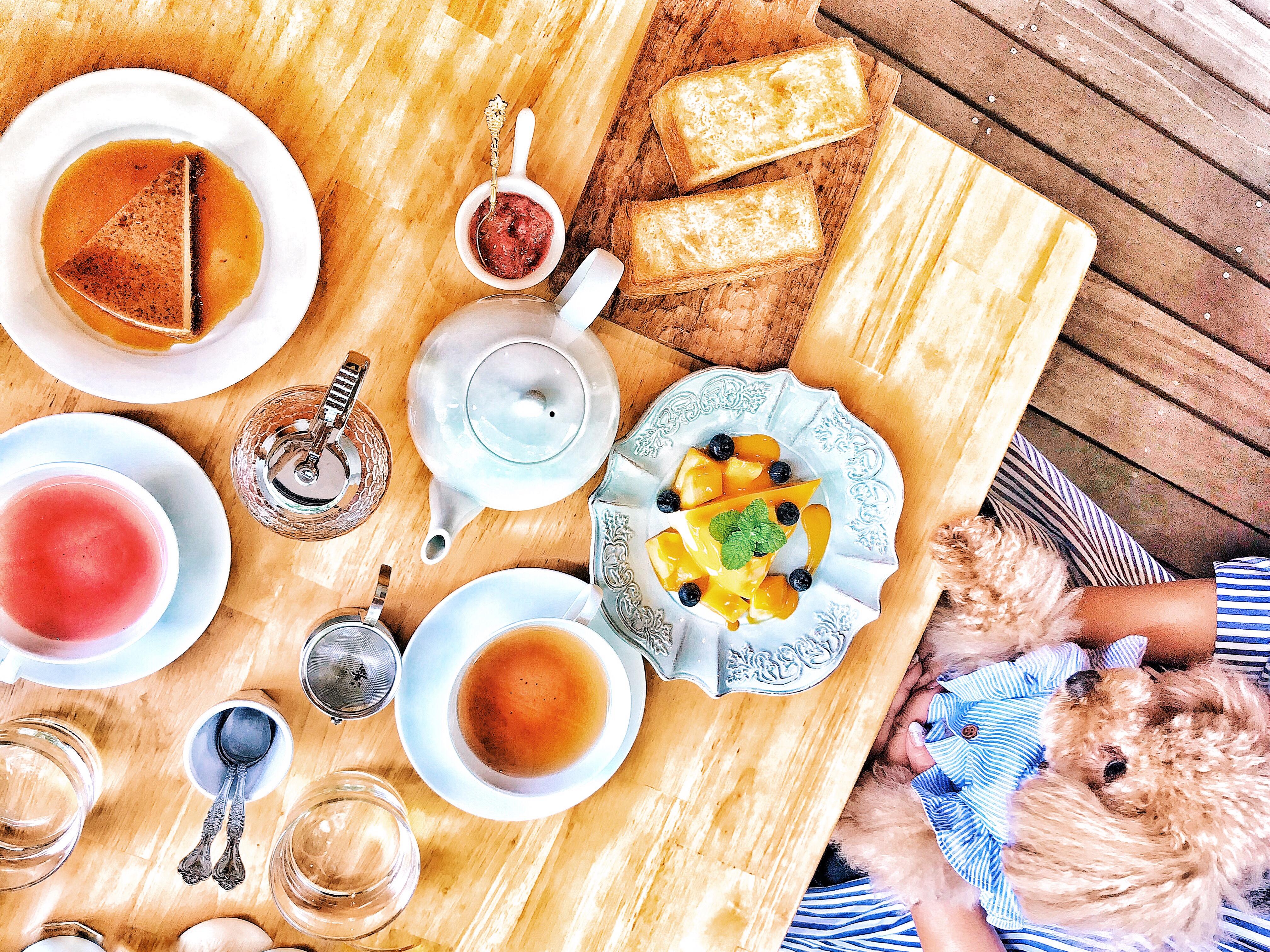 826b4b7e d916 4060 b44f b3f7bb4d71f8 - Cafe Forest Vale - また訪れたい 愛犬と過ごせる軽井沢の緑に囲まれたカフェ